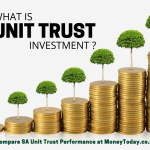 Compare Unit Trust Performance South Africa